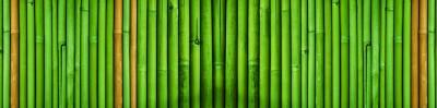 skinali bambus