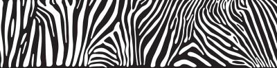 skinali zebra