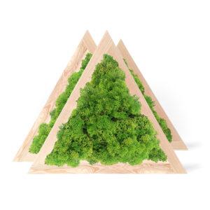 Set tablouri triunghiulare cu licheni cu latura 40 cm