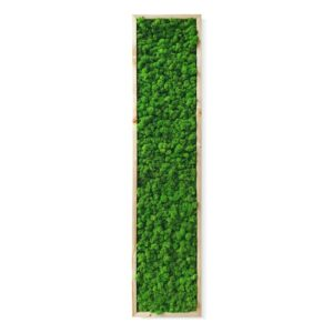 Tablou cu licheni 140x37cm Skinali Decor