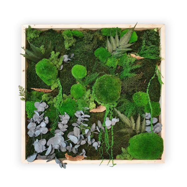 Tablou muschi si plante stabilizate 80x80 cm Skinali Decor