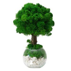 Copacel ornamental cu licheni stabilizati si pietricele decorative in bol 25cm inaltime Skinali Decor