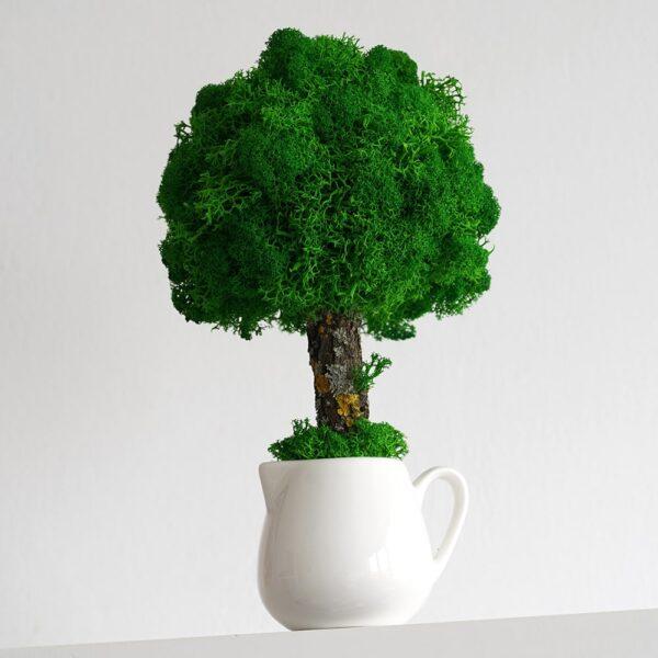 Copacel ornamental cu licheni stabilizati 22cm h verde intens in sosiera Skinali Decor