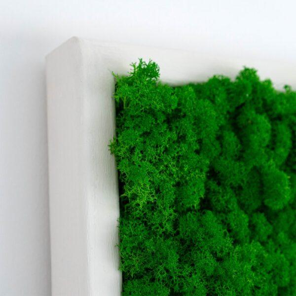 Tablou cu licheni 80 x 30 cm verde intens rama alba - Skinali Decor - Decoratiuni licheni